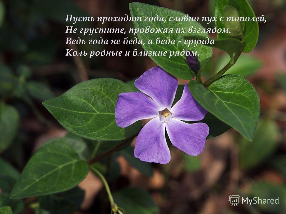 Пусть в этот день весенними лучами Вам улыбнутся люди и цветы И пусть навеки будут рядом с Вами Любовь, здоровье, счастье и мечты!