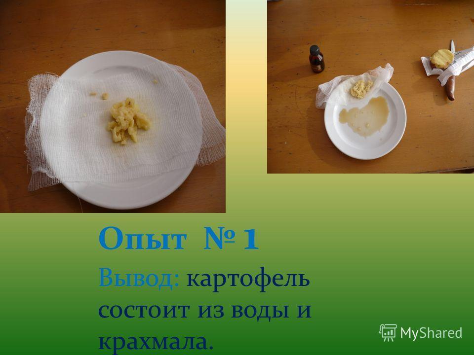 Опыт 1 Вывод: картофель состоит из воды и крахмала.