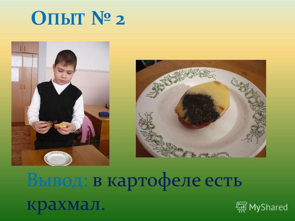 О ПЫТ 2 Вывод: в картофеле есть крахмал.