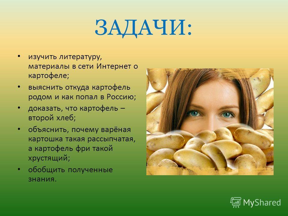 ЗАДАЧИ: изучить литературу, материалы в сети Интернет о картофеле; выяснить откуда картофель родом и как попал в Россию; доказать, что картофель – второй хлеб; объяснить, почему варёная картошка такая рассыпчатая, а картофель фри такой хрустящий; обо