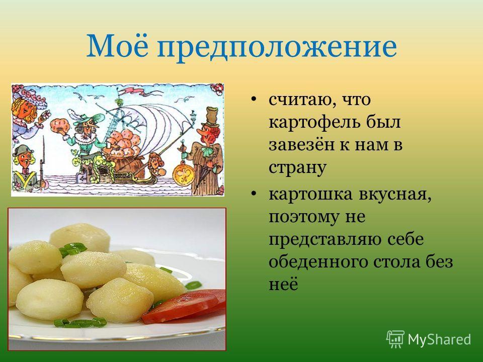 Моё предположение считаю, что картофель был завезён к нам в страну картошка вкусная, поэтому не представляю себе обеденного стола без неё