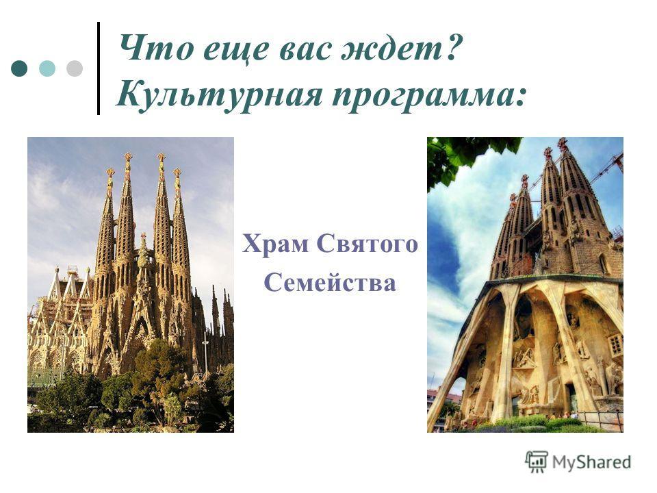 Что еще вас ждет? Культурная программа: Храм Святого Семейства