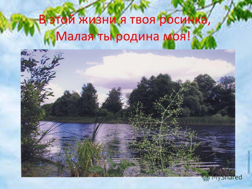 В этой жизни я твоя росинка, Малая ты родина моя!