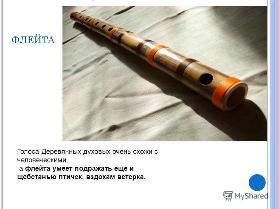 ФЛЕЙТА Голоса Деревянных духовых очень схожи с человеческими, а флейта умеет подражать еще и щебетанью птичек, вздохам ветерка.