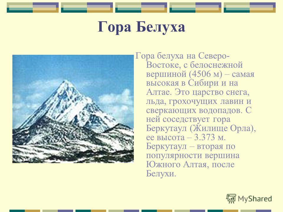 Гора Белуха Гора белуха на Северо- Востоке, с белоснежной вершиной (4506 м) – самая высокая в Сибири и на Алтае. Это царство снега, льда, грохочущих лавин и сверкающих водопадов. С ней соседствует гора Беркутаул (Жилище Орла), ее высота – 3.373 м. Бе