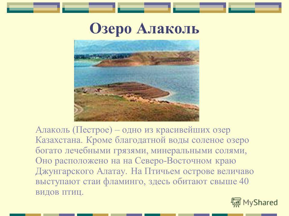 Озеро Алаколь Алаколь (Пестрое) – одно из красивейших озер Казахстана. Кроме благодатной воды соленое озеро богато лечебными грязями, минеральными солями, Оно расположено на на Северо-Восточном краю Джунгарского Алатау. На Птичьем острове величаво вы