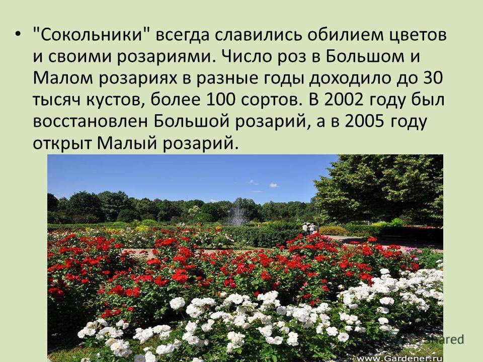 Сокольники всегда славились обилием цветов и своими розариями. Число роз в Большом и Малом розариях в разные годы доходило до 30 тысяч кустов, более 100 сортов. В 2002 году был восстановлен Большой розарий, а в 2005 году открыт Малый розарий.
