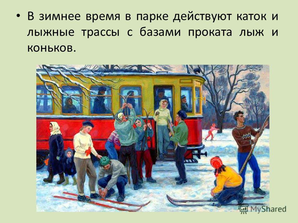 В зимнее время в парке действуют каток и лыжные трассы с базами проката лыж и коньков.