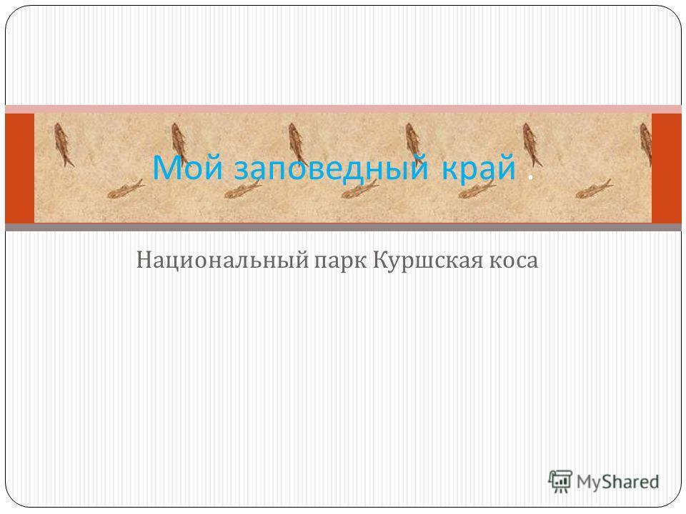 Национальный парк Куршская коса Мой заповедный край.