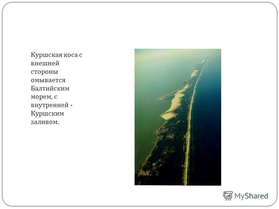 Куршская коса с внешней стороны омывается Балтийским морем, с внутренней - Куршским заливом.