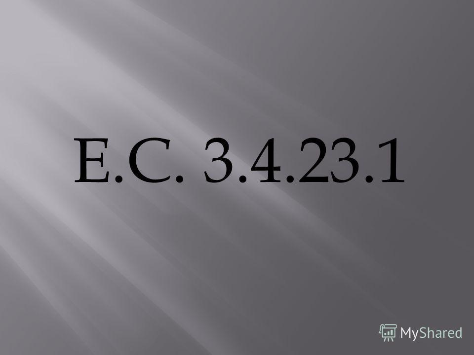 E.C. 3.4.23.1