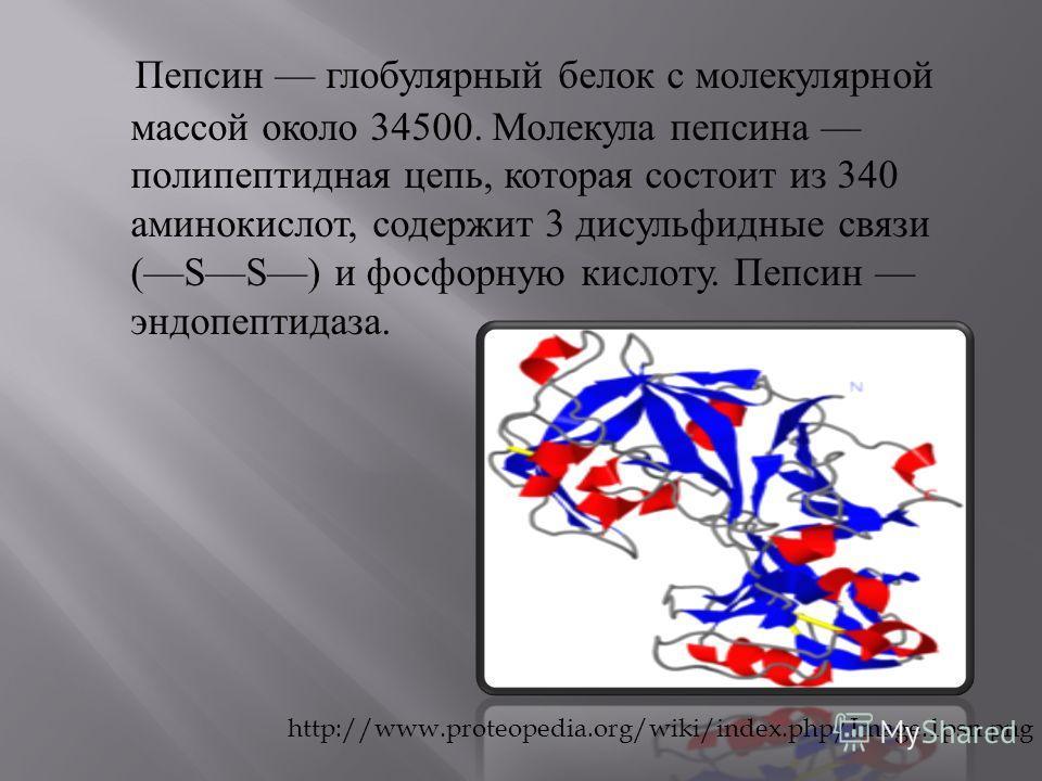 Пепсин глобулярный белок с молекулярной массой около 34500. Молекула пепсина полипептидная цепь, которая состоит из 340 аминокислот, содержит 3 дисульфидные связи (SS) и фосфорную кислоту. Пепсин эндопептидаза. http://www.proteopedia.org/wiki/index.p