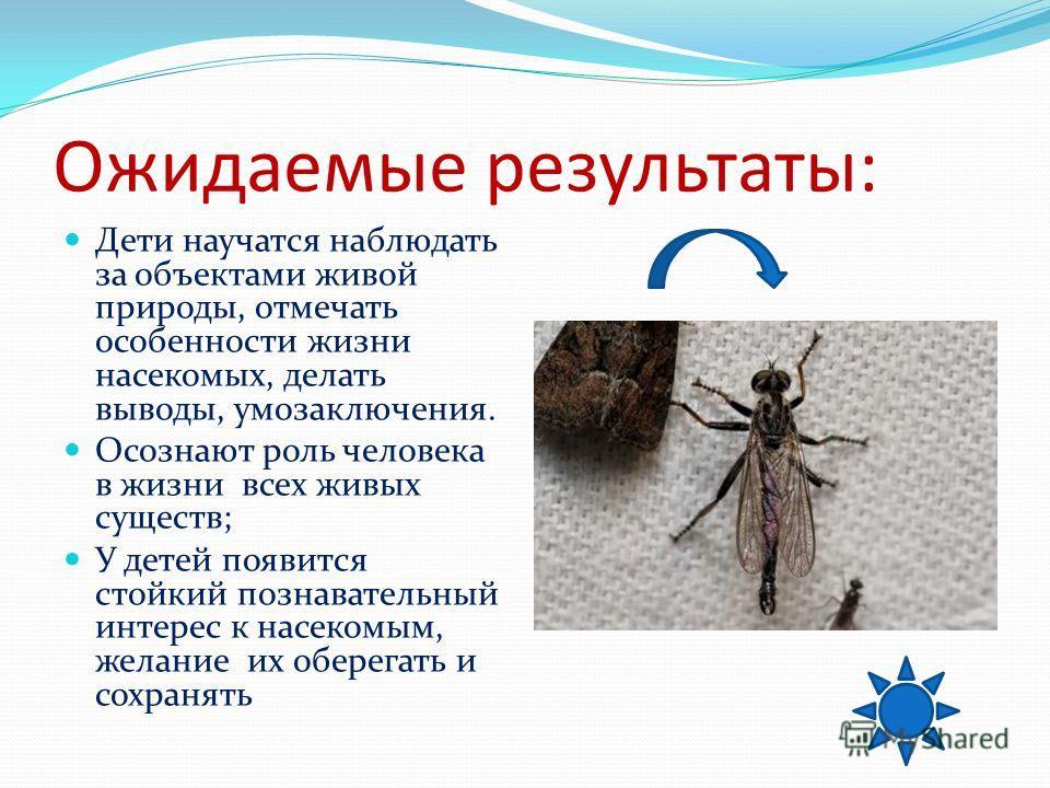 Ожидаемые результаты: Дети научатся наблюдать за объектами живой природы, отмечать особенности жизни насекомых, делать выводы, умозаключения. Осознают роль человека в жизни всех живых существ; У детей появится стойкий познавательный интерес к насеком