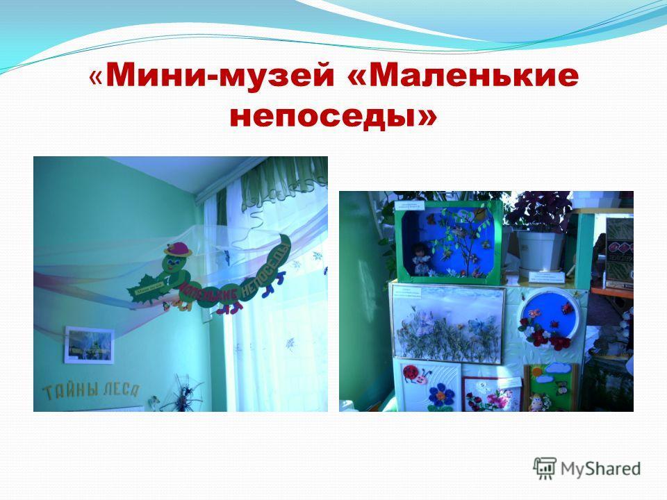 « Мини-музей «Маленькие непоседы»