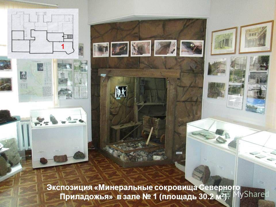 Экспозиция «Минеральные сокровища Северного Приладожья» в зале 1 (площадь 30.2 м 2 ) 1