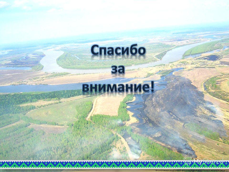 ©Муниципальный методический центр Комитета образования администрации Березовского района