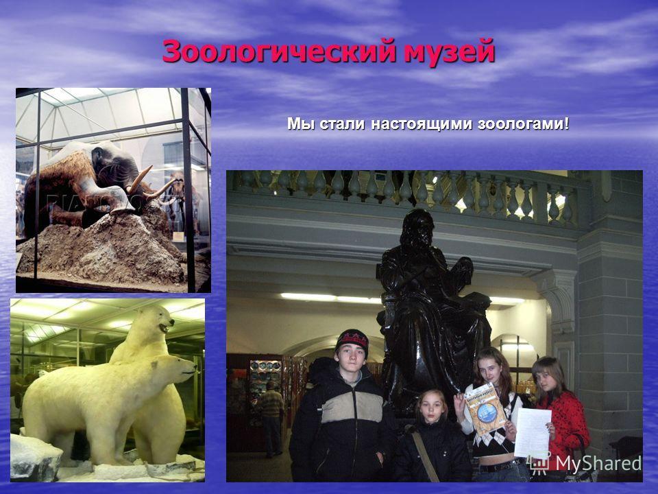 Зоологический музей Мы стали настоящими зоологами!