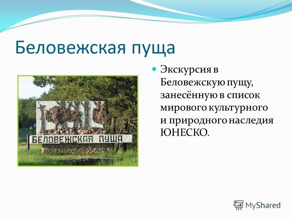 Беловежская пуща Экскурсия в Беловежскую пущу, занесённую в список мирового культурного и природного наследия ЮНЕСКО.