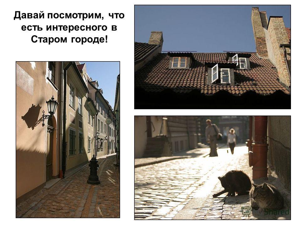 Давай посмотрим, что есть интересного в Старом городе!
