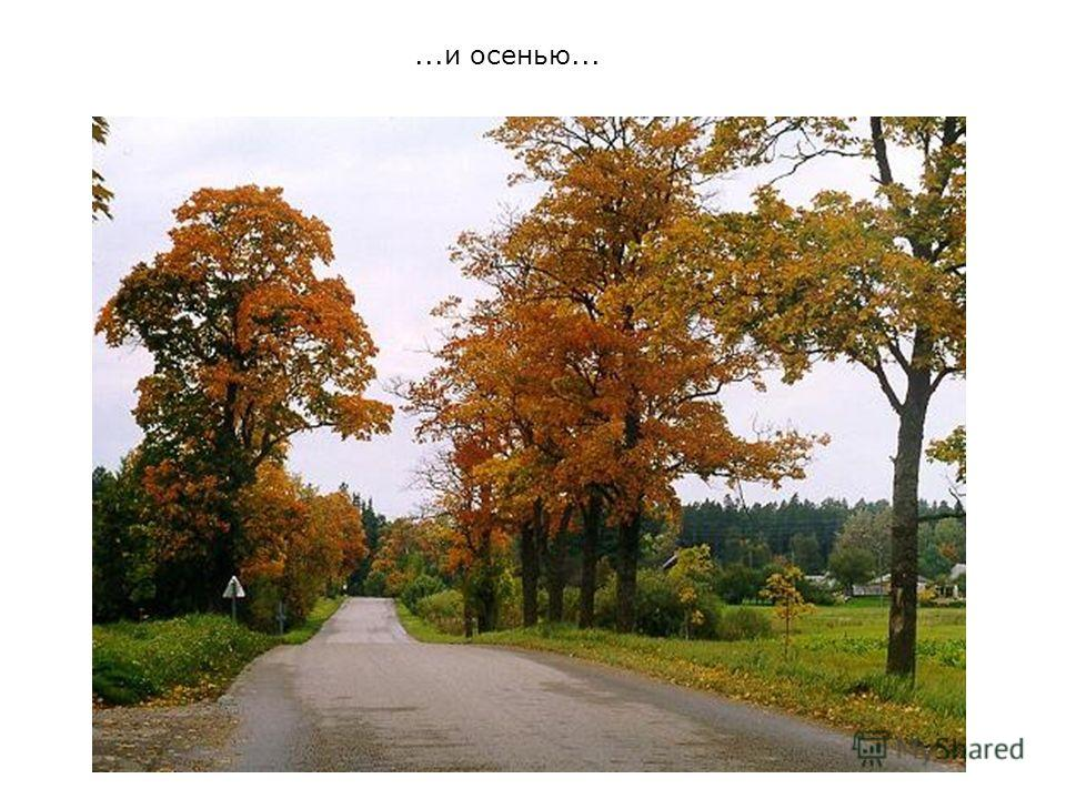 ...и осенью...