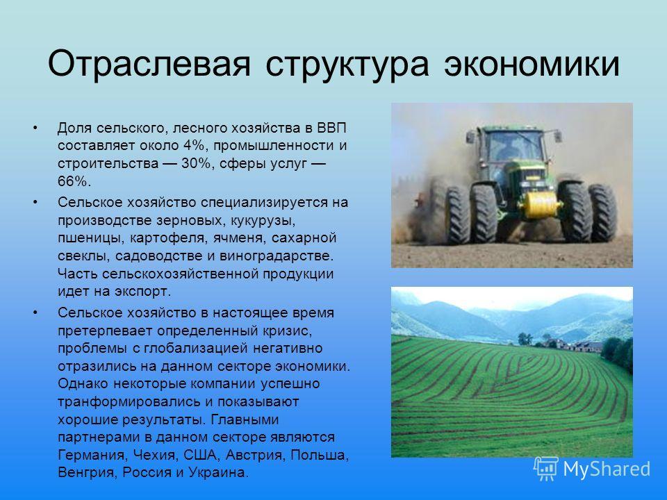 Отраслевая структура экономики Доля сельского, лесного хозяйства в ВВП составляет около 4%, промышленности и строительства 30%, сферы услуг 66%. Сельское хозяйство специализируется на производстве зерновых, кукурузы, пшеницы, картофеля, ячменя, сахар