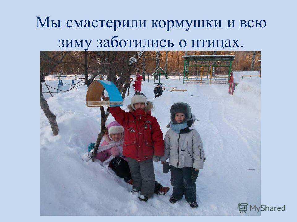 Мы смастерили кормушки и всю зиму заботились о птицах.