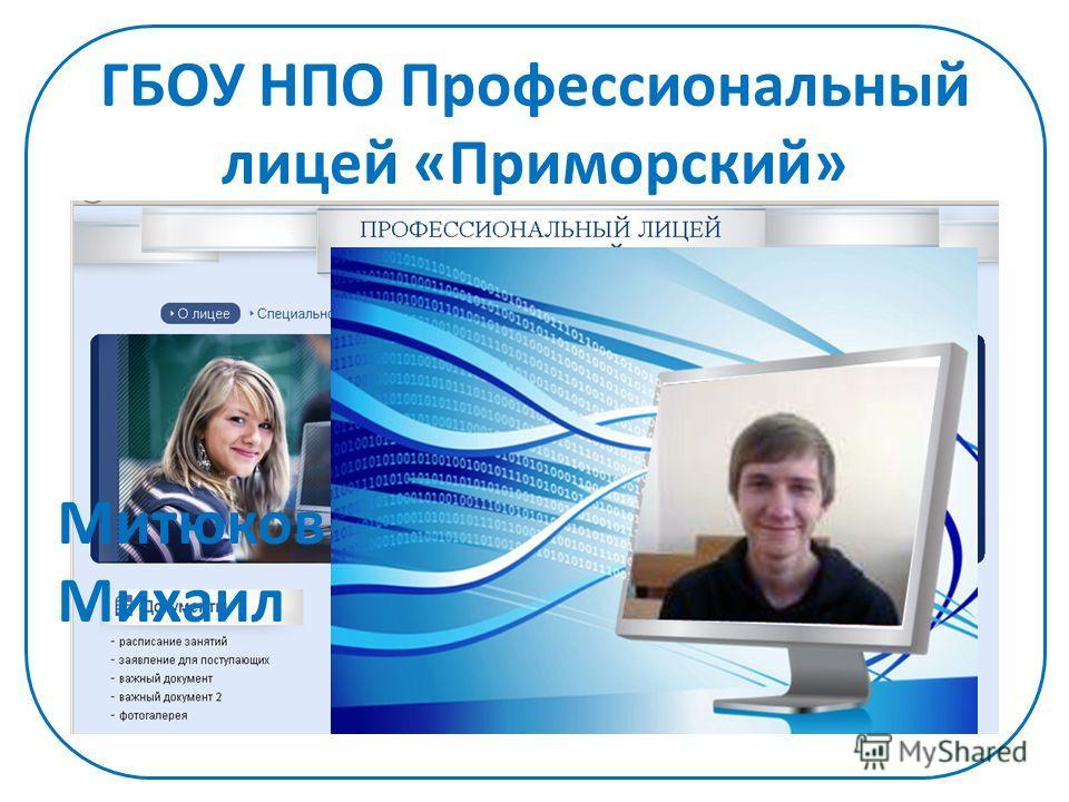 ГБОУ НПО Профессиональный лицей «Приморский» Митюков Михаил