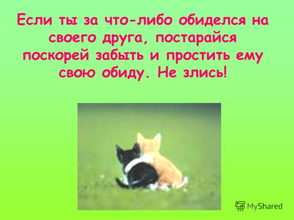 Если ты за что-либо обиделся на своего друга, постарайся поскорей забыть и простить ему свою обиду. Не злись!