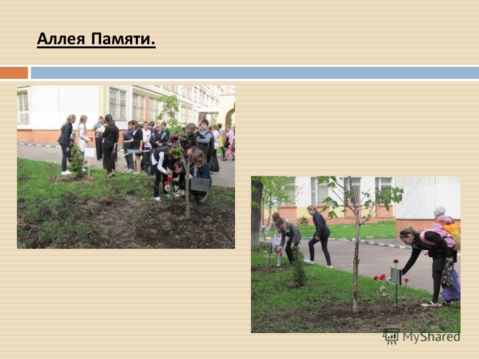 Аллея Памяти.