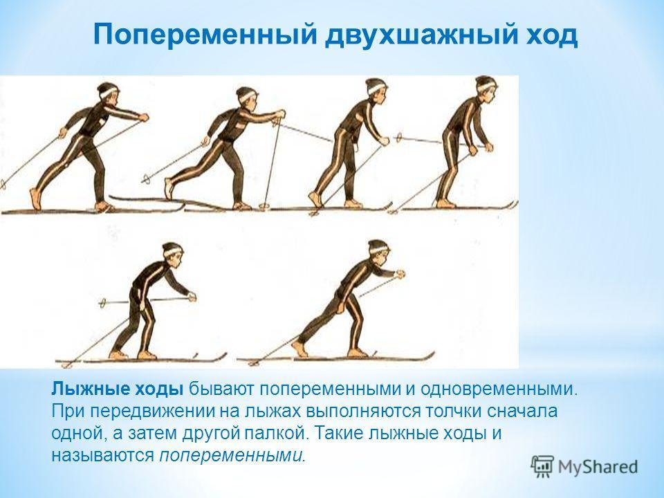 Попеременный двухшажный ход Лыжные ходы бывают попеременными и одновременными. При передвижении на лыжах выполняются толчки сначала одной, а затем другой палкой. Такие лыжные ходы и называются попеременными.