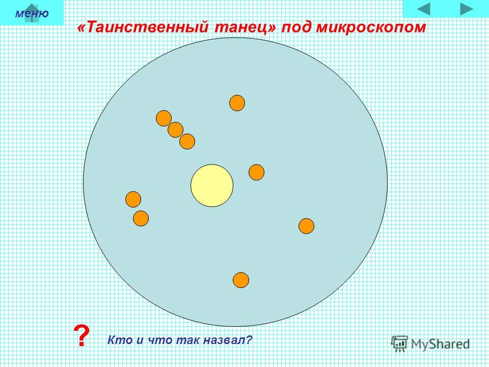 «Таинственный танец» под микроскопом Кто и что так назвал? ? меню