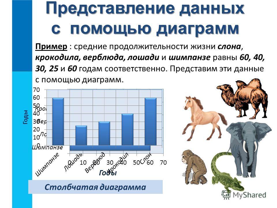 Пример : средние продолжительности жизни слона, крокодила, верблюда, лошади и шимпанзе равны 60, 40, 30, 25 и 60 годам соответственно. Представим эти данные с помощью диаграмм. Линейная диаграмма Представление данных с помощью диаграмм Столбчатая диа