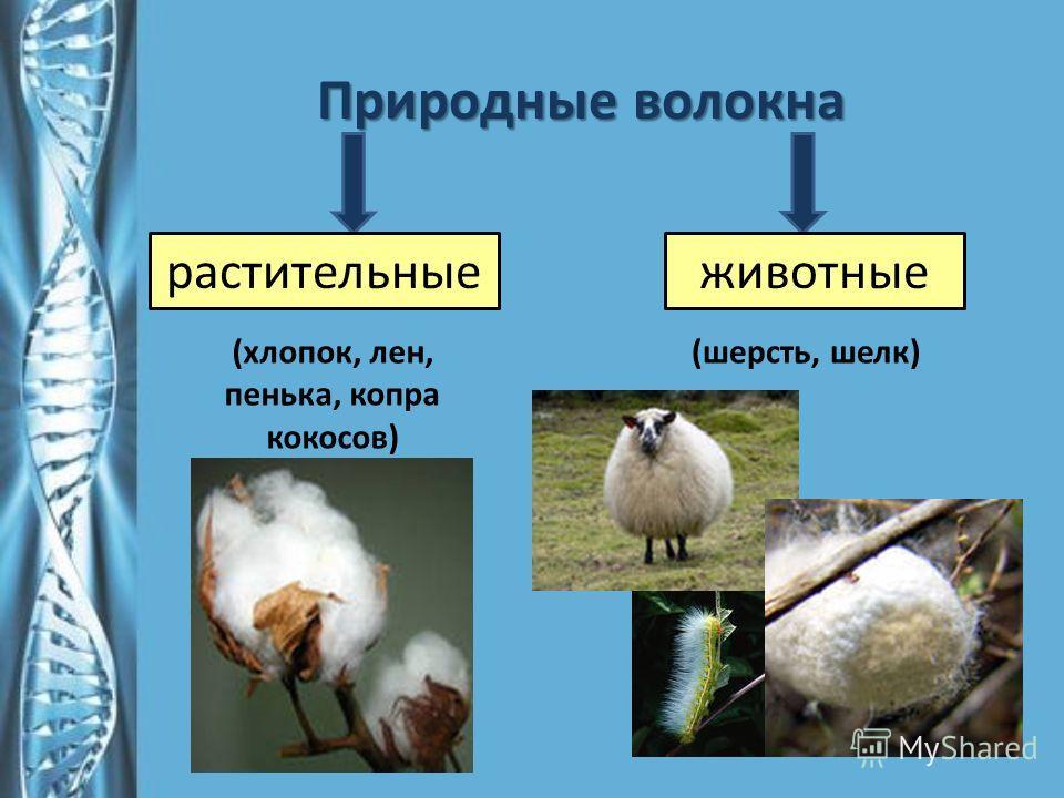 Природные волокна растительныеживотные (хлопок, лен, пенька, копра кокосов) (шерсть, шелк)