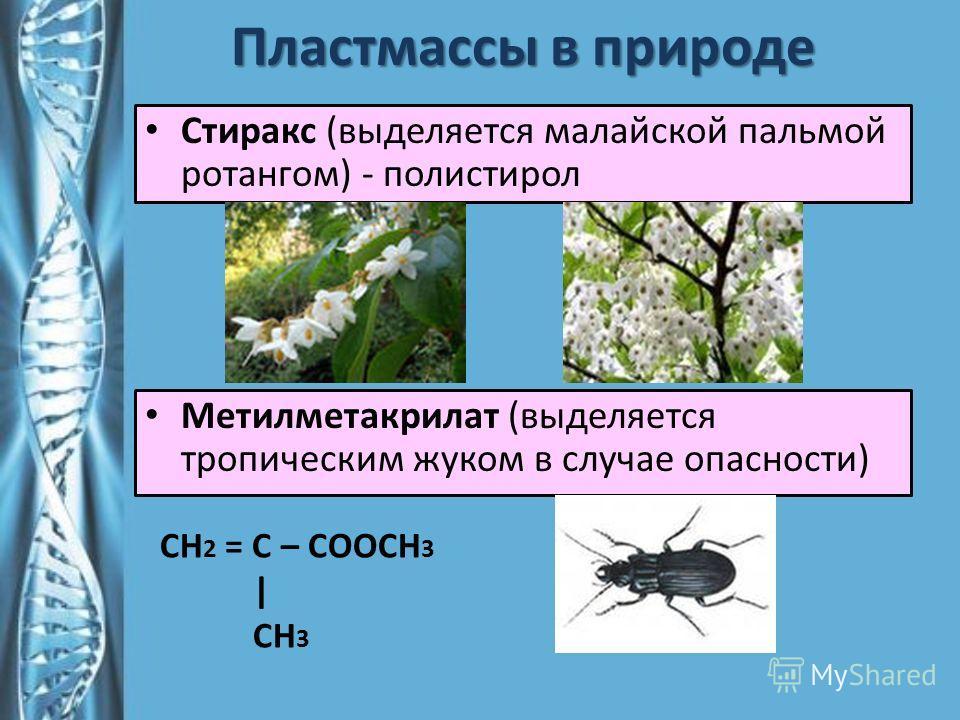 Пластмассы в природе Стиракс (выделяется малайской пальмой ротангом) - полистирол Метилметакрилат (выделяется тропическим жуком в случае опасности) СН 2 = С – СООСН 3   СН 3