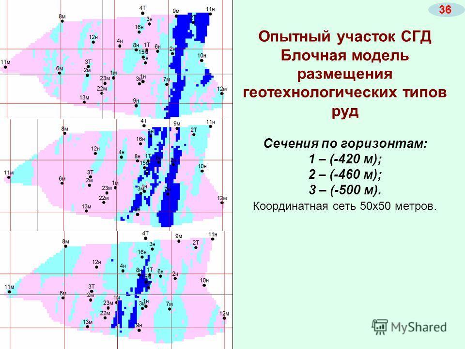 Опытный участок СГД Блочная модель размещения геотехнологических типов руд Сечения по горизонтам: 1 – (-420 м); 2 – (-460 м); 3 – (-500 м). Координатная сеть 50х50 метров. 36