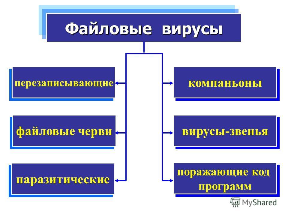 компаньоны Файловые вирусы перезаписывающие вирусы-звенья файловые черви паразитические поражающие код программ поражающие код программ