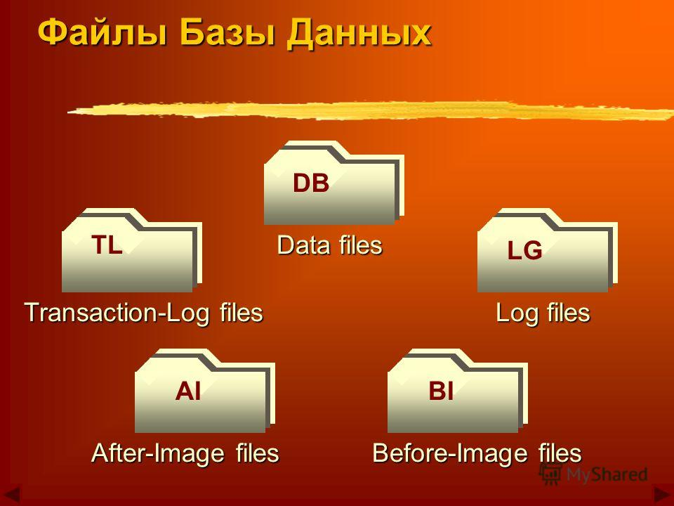 DB LG TL BIAI Data files Log files Before-Image files After-Image files Transaction-Log files Файлы Базы Данных