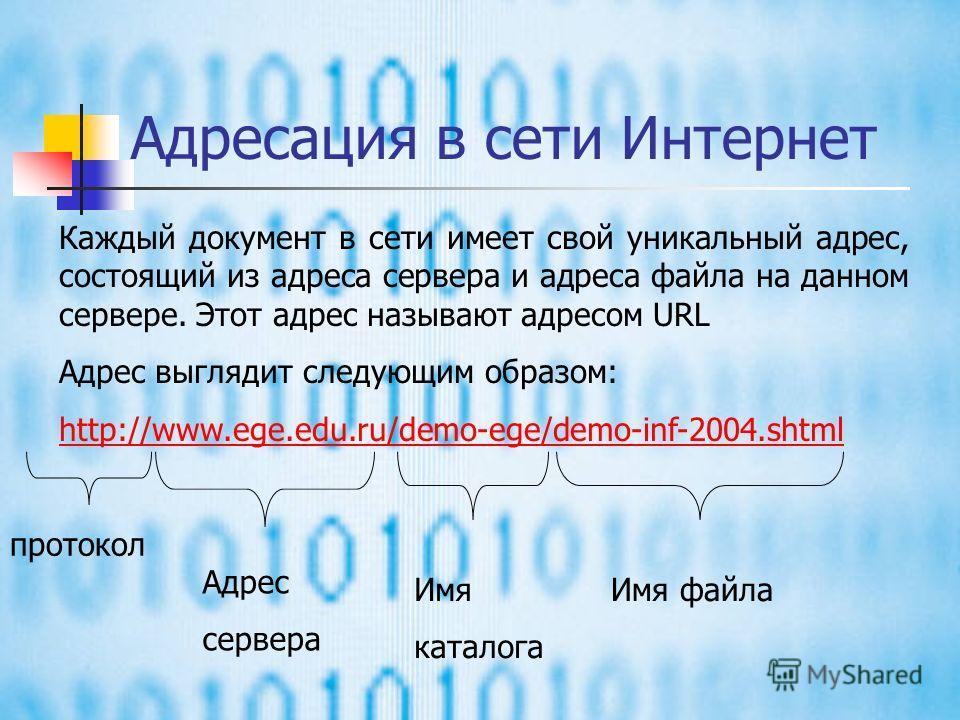 Два кита WWW И электронная почта, и система телеконференций – это как бы «заочные» системы обмена информацией. Служба World Wide Web предназначена для «очной», то есть интерактивной работы. Она представляет собой возможность поиска и сбора информации