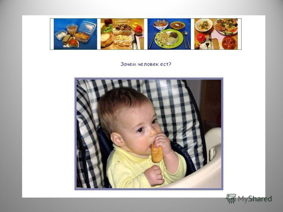 Значение питания в жизни и деятельности людей