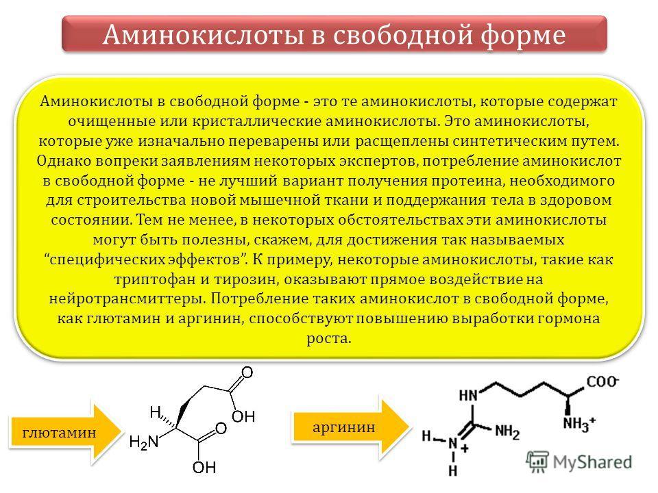 Аминокислоты в свободной форме Аминокислоты в свободной форме - это те аминокислоты, которые содержат очищенные или кристаллические аминокислоты. Это аминокислоты, которые уже изначально переварены или расщеплены синтетическим путем. Однако вопреки з