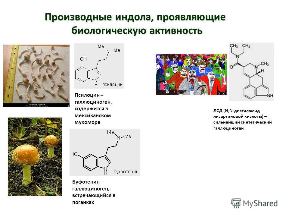 Производные индола, проявляющие биологическую активность ЛСД (N,N-диэтиламид лизергиновой кислоты) – сильнейший синтетический галлюциноген Псилоцин – галлюциноген, содержится в мексиканском мухоморе Буфотенин – галлюциноген, встречающийся в поганках