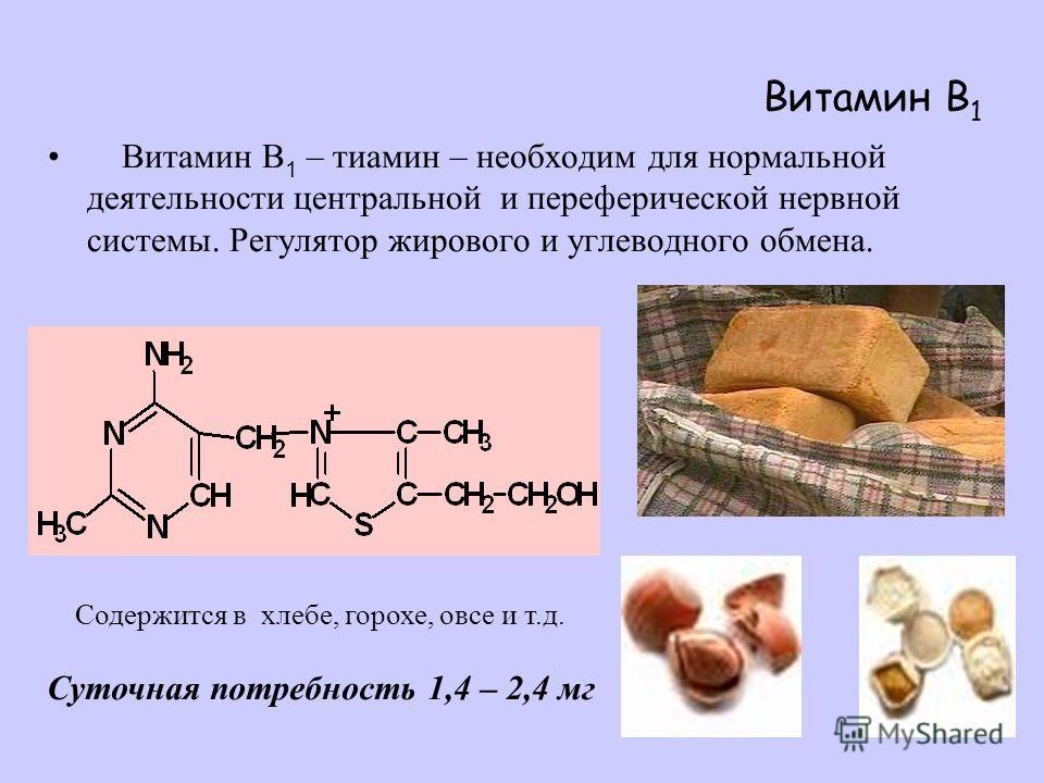 Витамин B 1 Витамин B 1 – тиамин – необходим для нормальной деятельности центральной и переферической нервной системы. Регулятор жирового и углеводного обмена. Содержится в хлебе, горохе, овсе и т.д. Суточная потребность 1,4 – 2,4 мг
