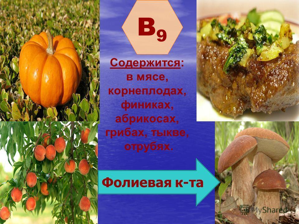 B9B9 Содержится: в мясе, корнеплодах, финиках, абрикосах, грибах, тыкве, отрубях. Фолиевая к-та