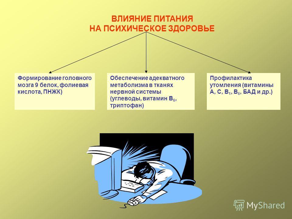 ВЛИЯНИЕ ПИТАНИЯ НА ПСИХИЧЕСКОЕ ЗДОРОВЬЕ Формирование головного мозга 9 белок, фолиевая кислота, ПНЖК) Обеспечение адекватного метаболизма в тканях нервной системы (углеводы, витамин В 6, триптофан) Профилактика утомления (витамины А, С, В 1, В 6, БАД