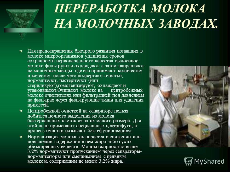 ПЕРЕРАБОТКА МОЛОКА НА МОЛОЧНЫХ ЗАВОДАХ. Для предотвращения быстрого развития попавших в молоко микроорганизмов удлинения сроков сохранности первоначального качества выдоенное молоко фильтруют и охлаждают, а затем направляют на молочные заводы, где ег