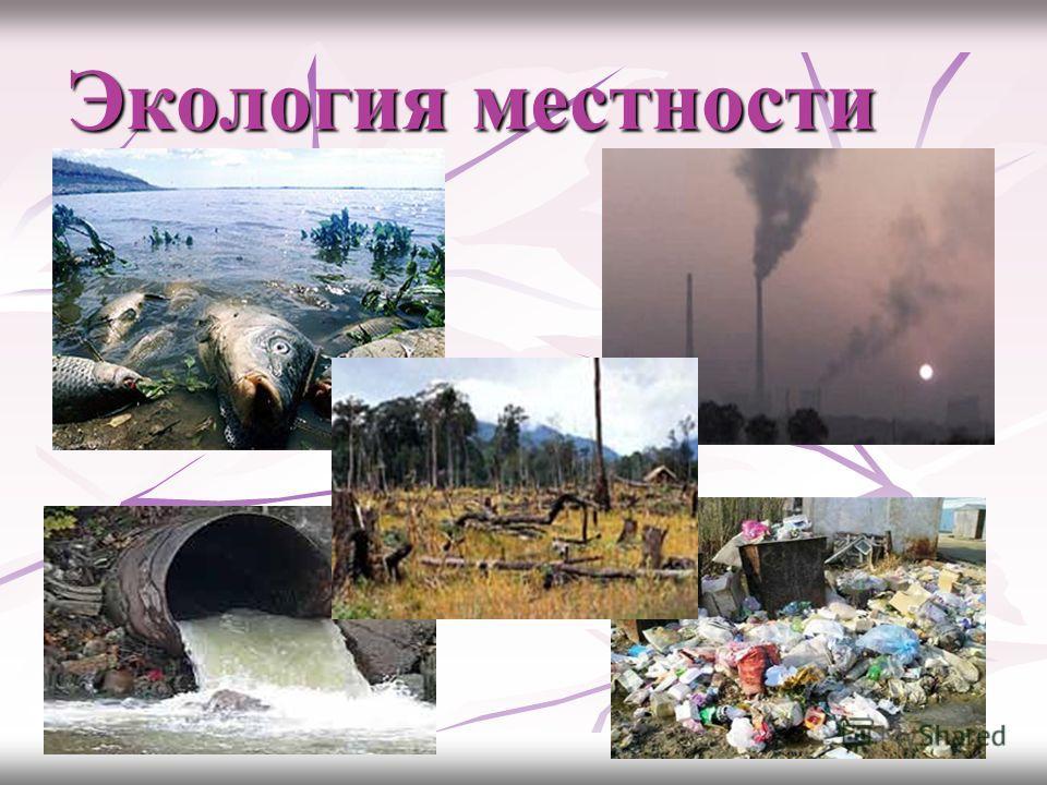 Экология местности
