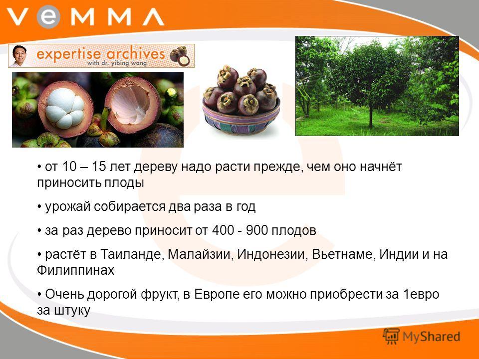 от 10 – 15 лет дереву надо расти прежде, чем оно начнёт приносить плоды урожай собирается два раза в год за раз дерево приносит от 400 - 900 плодов растёт в Таиланде, Малайзии, Индонезии, Вьетнаме, Индии и на Филиппинах Очень дорогой фрукт, в Европе