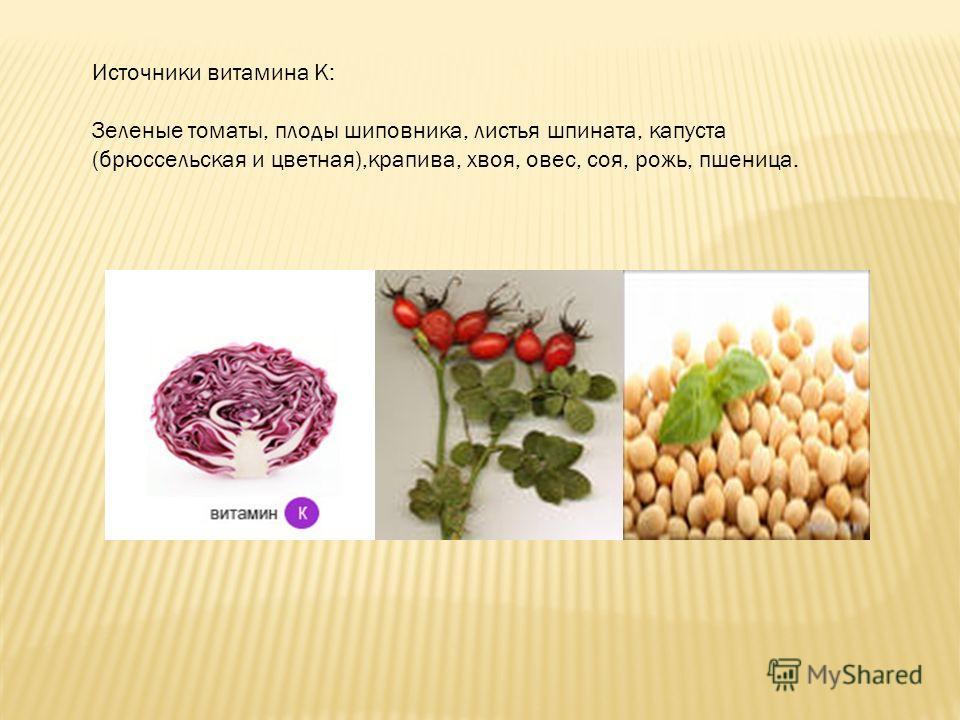 Источники витамина К: Зеленые томаты, плоды шиповника, листья шпината, капуста (брюссельская и цветная),крапива, хвоя, овес, соя, рожь, пшеница.