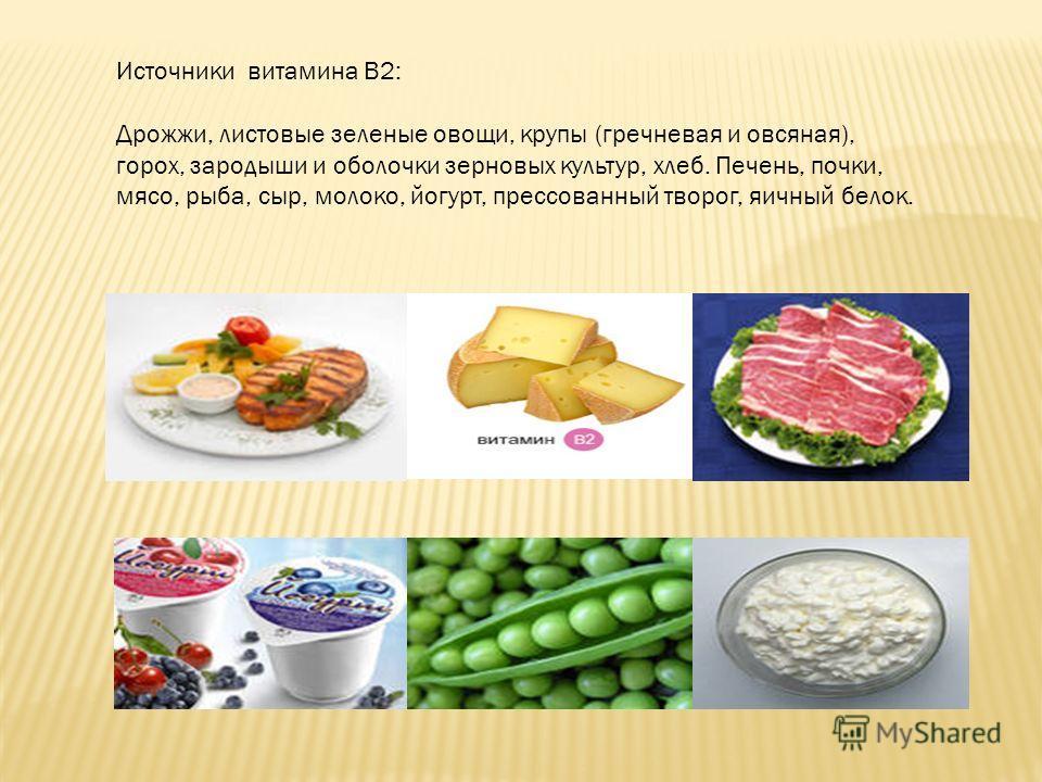 Источники витамина В2: Дрожжи, листовые зеленые овощи, крупы (гречневая и овсяная), горох, зародыши и оболочки зерновых культур, хлеб. Печень, почки, мясо, рыба, сыр, молоко, йогурт, прессованный творог, яичный белок.