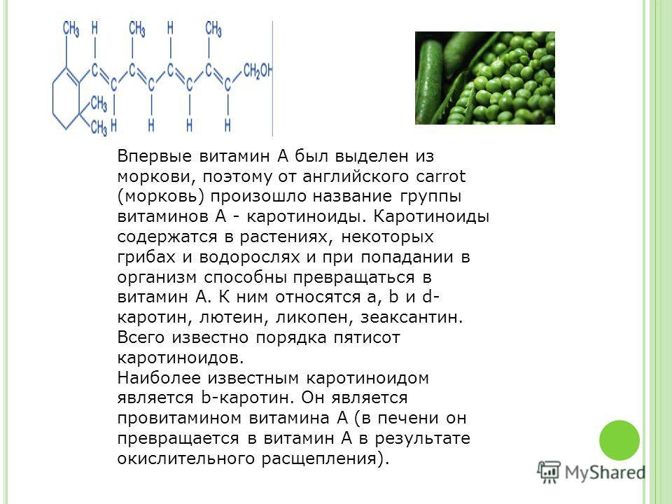 Впервые витамин А был выделен из моркови, поэтому от английского carrot (морковь) произошло название группы витаминов А - каротиноиды. Каротиноиды содержатся в растениях, некоторых грибах и водорослях и при попадании в организм способны превращаться
